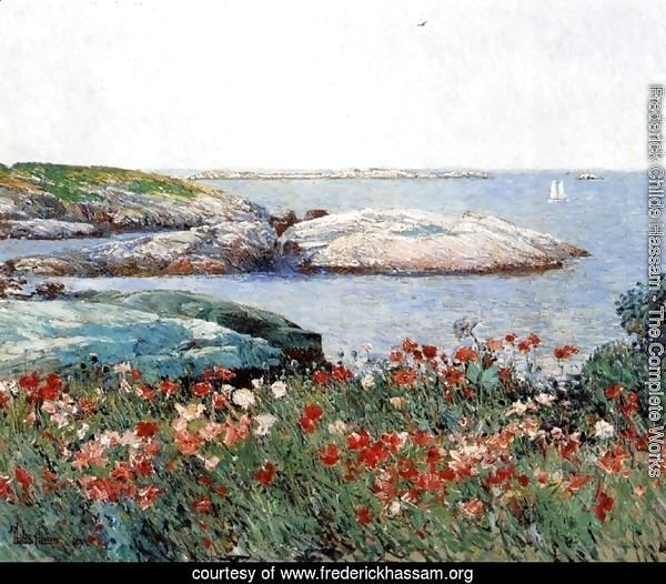 Poppies, Isles of Shoals I
