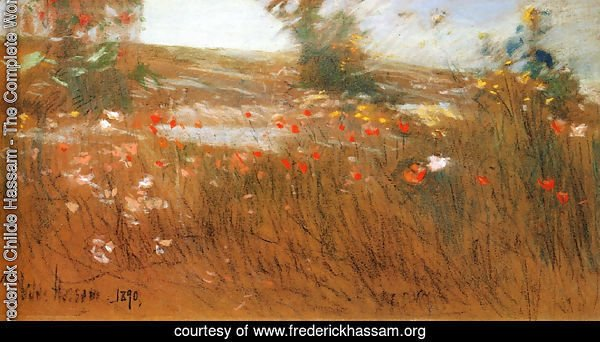Poppies, Isles of Shoals III