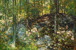 Frederick Childe Hassam - Laurel on the Ledges