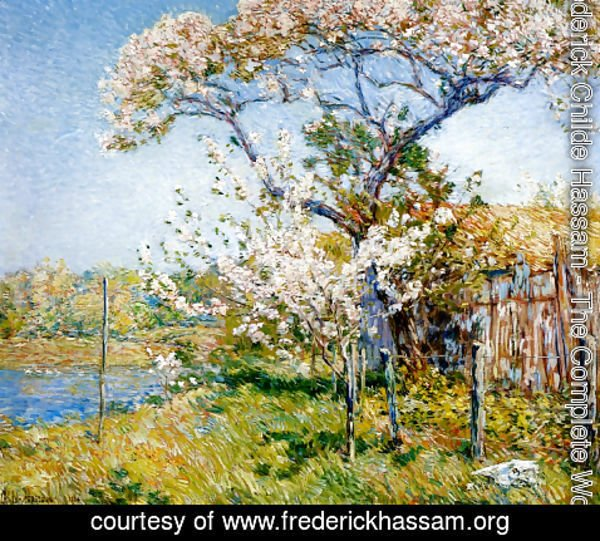 Frederick Childe Hassam - Apple Trees in Bloom, Old Lyme