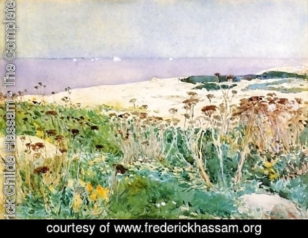 Frederick Childe Hassam - Isles of Shoals IV