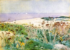 Frederick Childe Hassam - Islea of Shoals2